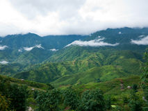 Sapa Valley in Vietnam Royalty Free Stock Photography