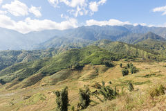 Sapa valley in Vietnam Royalty Free Stock Image