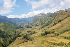 Sapa valley in Vietnam Stock Photography