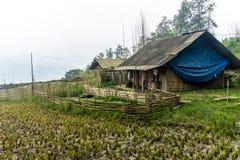 Sapa, Vietnam Fotografie Stock Libere da Diritti