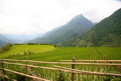 Sapa, Vietnam Stock Photos