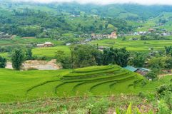 Aerial view on Muong Hoa valley with rice terraces. Sapa, Vietnam - August 19, 2017: Aerial view on Muong Hoa valley with rice terraces and villages Stock Photos
