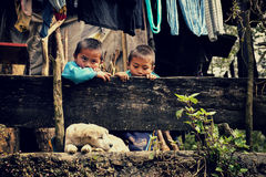 Sapa, Vietnam - 29 December, 2012: Two kids look at the sleeping dog Royalty Free Stock Image