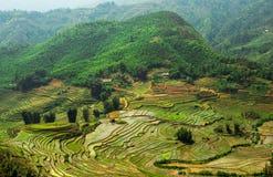 Sapa Vietnam Stock Image