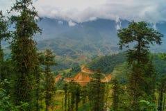 Sapa, Vietnam Los árboles en las cuestas de montaña Fotos de archivo