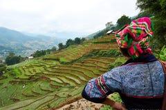 Sapa, Vietnam - 22 mai 2019 Olhar vietnamiano do tribo do monte na vista sobre o ricefield no valey do sapa de chai do lao em Vie imagem de stock