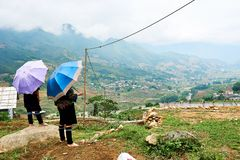 Sapa, Vietnam.- 22. Mai. 2019. Vietnamese hill Tribe look at view over ricefield in lao chai sapa valey in Vietnam royalty free stock images
