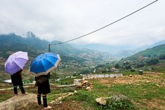 Sapa, Vietnam.- 22. Mai. 2019. Vietnamese hill Tribe look at view over ricefield in lao chai sapa valey in Vietnam. Fogy Landscape of Ricefields in lao chai sapa royalty free stock photos