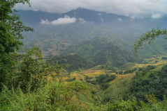 Sapa, Vietnam. Rice fields on the slopes of the mountain panoram. Haze over the mountains of Sapa Stock Photo