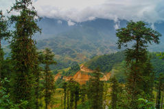 Sapa, Vietnam. The trees on the mountain slopes. The magnificent landscape, road in the mountains Stock Photos