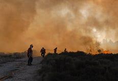 Sapadores-bombeiros Fotos de Stock