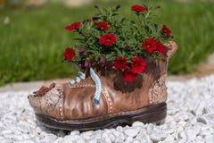 Sapata com flores fotografia de stock royalty free