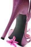 Sapata cor-de-rosa dos saltos elevados da forma Fotos de Stock Royalty Free