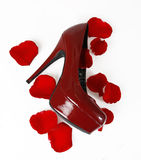 Sapata vermelha e pétalas cor-de-rosa Imagem de Stock Royalty Free