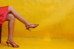 Sapatas agradáveis Fotos de Stock Royalty Free