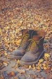 sapatas Bem-gastas, botas na floresta fotos de stock royalty free