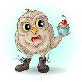 Sapatas bonitos da coruja dos desenhos animados com queques Imagem de Stock