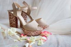 sapatas brilhantes do ouro em um tule nas pétalas cor-de-rosa Imagens de Stock Royalty Free