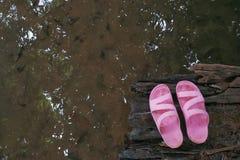 Sapatas cor-de-rosa Fotos de Stock Royalty Free