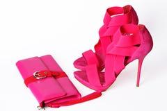 Sapatas cor-de-rosa elegantes Fotos de Stock Royalty Free