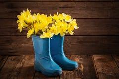 Sapatas da criança com flores da mola Imagens de Stock