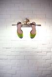 Sapatas da dama de honra na parede de tijolo branca da lâmpada Imagens de Stock Royalty Free