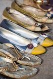 Sapatas da mulher Foto de Stock Royalty Free