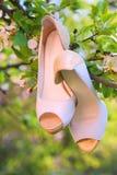 Sapatas da noiva do casamento no ramo de árvore da maçã Conceito dos copos de água Fotografia de Stock Royalty Free