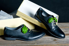 Sapatas de couro italianas Fotografia de Stock Royalty Free