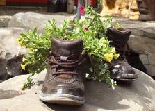 Sapatas de jardinagem Imagem de Stock