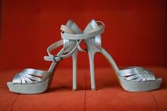 Sapatas de prata das mulheres Fotografia de Stock