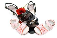 Sapatas do bebê e da mulher, com uma rosa para dentro, isolado Foto de Stock