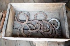 Sapatas do cavalo em uma caixa de madeira imagem de stock