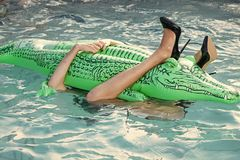 Sapatas do couro do crocodilo Sapatas da forma da pele do crocodilo foto de stock royalty free