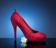 Sapatas fêmeas vermelhas Fotografia de Stock