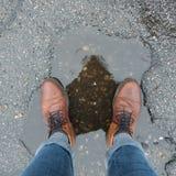 Sapatas na água Imagem de Stock Royalty Free