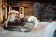 Sapatas tradicionais da pele do raindeer de Sami foto de stock royalty free
