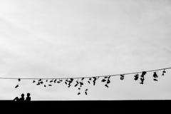 Sapatas velhas que penduram no fio - mudança da vida Foto de Stock