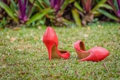 Sapatas vermelhas da obstrução no jardim verde Fotos de Stock Royalty Free