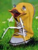 Sapatilhas amarelas Foto de Stock