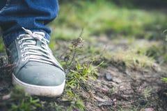 Sapatilhas cinzentas na grama fora da cidade imagens de stock royalty free