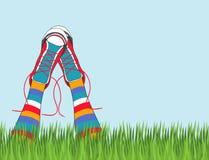 sapatilhas coloridas funky da forma dos gumshoes das sapatas isoladas Fotografia de Stock Royalty Free