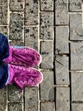 Sapatilhas roxas no fundo do pavimento de madeira em Copenhaga, vista superior fotografia de stock