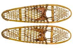 Sapatos de neve da pata de urso Fotografia de Stock