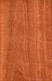 Sapele (struttura di legno) Fotografia Stock Libera da Diritti