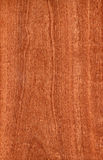 Sapele (wood texture) Royalty Free Stock Photography