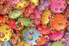 Sapientoni attraverso le goccioline di acqua (2) immagine stock libera da diritti