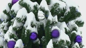 Sapin de Noël décoré clips vidéos