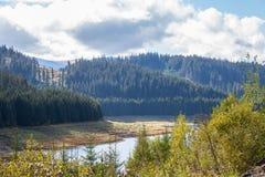 Sapin et d'autres pins sur des montagnes près du lac Vidra Lacul Vidra sur une fin nuageuse de l'été/de après-midi de chute surpl Image stock
