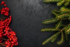 Sapin et sorbe Fond noir Fond de Noël Belle photo Image stock